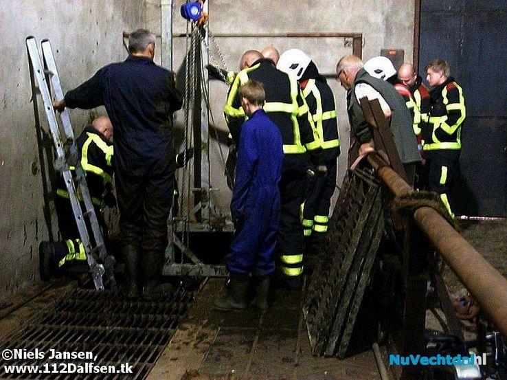 Brandweer redt twee pinken uit mestkelder - Foto: Niels Jansen