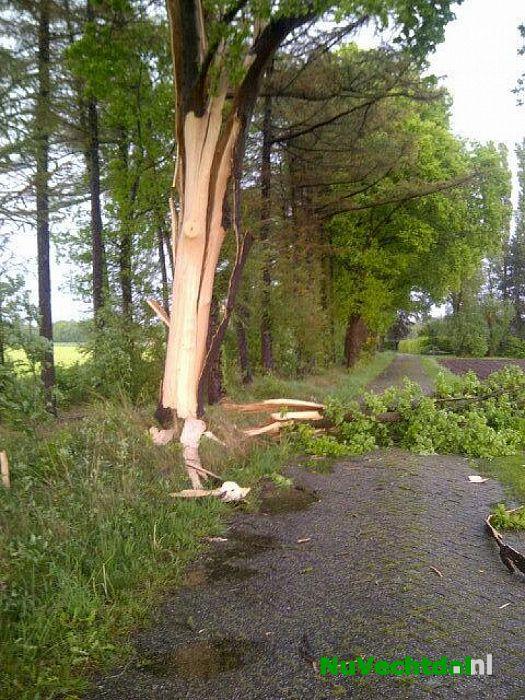 Blikseminslag Hagenweg Dalfsen vernietigd boom - Foto: Politie Dalfsen/Ommen