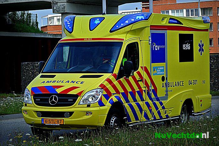 VIDEO: Nieuwleusense gewond bij paardenkeuring - Foto: Niels Jansen