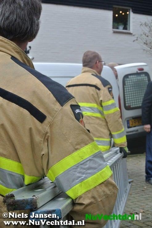 Brandweer Dalfsen haalt poes uit boom - Foto: Niels Jansen