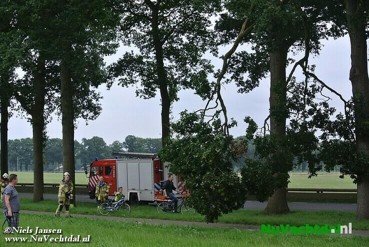 Grote tak afgeknapt boven fietspad Rechterensedijk Dalfsen - Foto: Niels Jansen