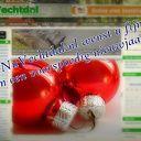 NuVechtdal.nl wenst u fijne feestdagen en een goed 2013