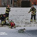 Meeuw vast op het ijs aan de Jan Tooropstraat in Ommen